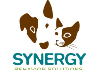Synergy Behavior Solutions